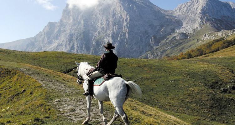 Reisefuehrer Trekking zu Pferde