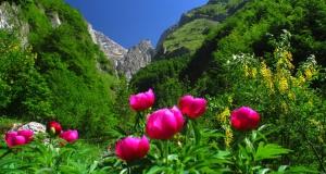 National Park of Gran Sasso and the Majella Massive